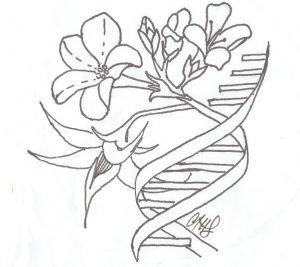 Labratory Logo. Designed by Amelia Lovelace
