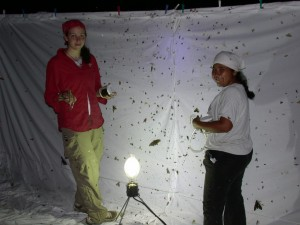 bolivia 2005 194