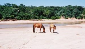 bolivia 2005 347
