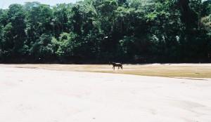bolivia 2005 787