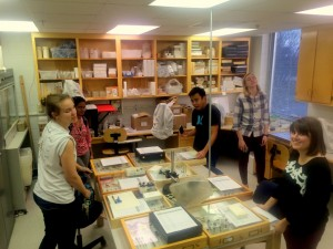 insect taxonomy collection deadline