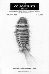 dermestid larva cover
