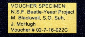 INFO FOR RESEARCHERS VOUCHER SPECIMENS label from Beetle-Yeast Project