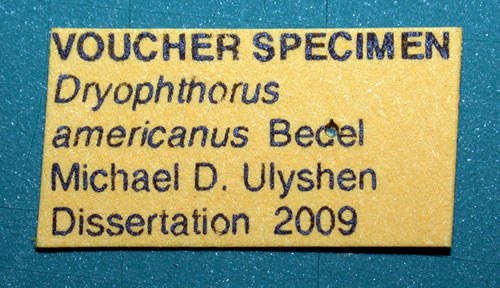 INFO FOR RESEARCHERS VOUCHER SPECIMENS label from dissertation of Mike Ulyshen