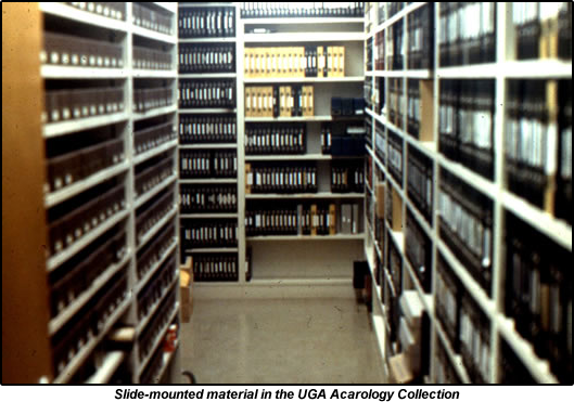 UGCA mite collection slides in Bio Sci Building.fw