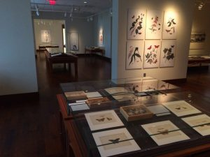Abbot exhibit Hargrett Library UGCA material 2016